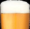 DayTrip Beer - Stanley Park Brewery