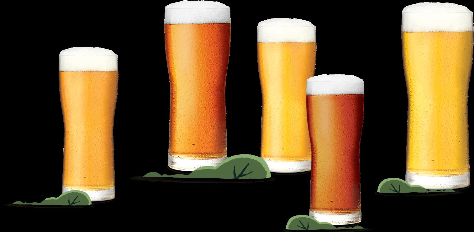 Stanley Park Beer